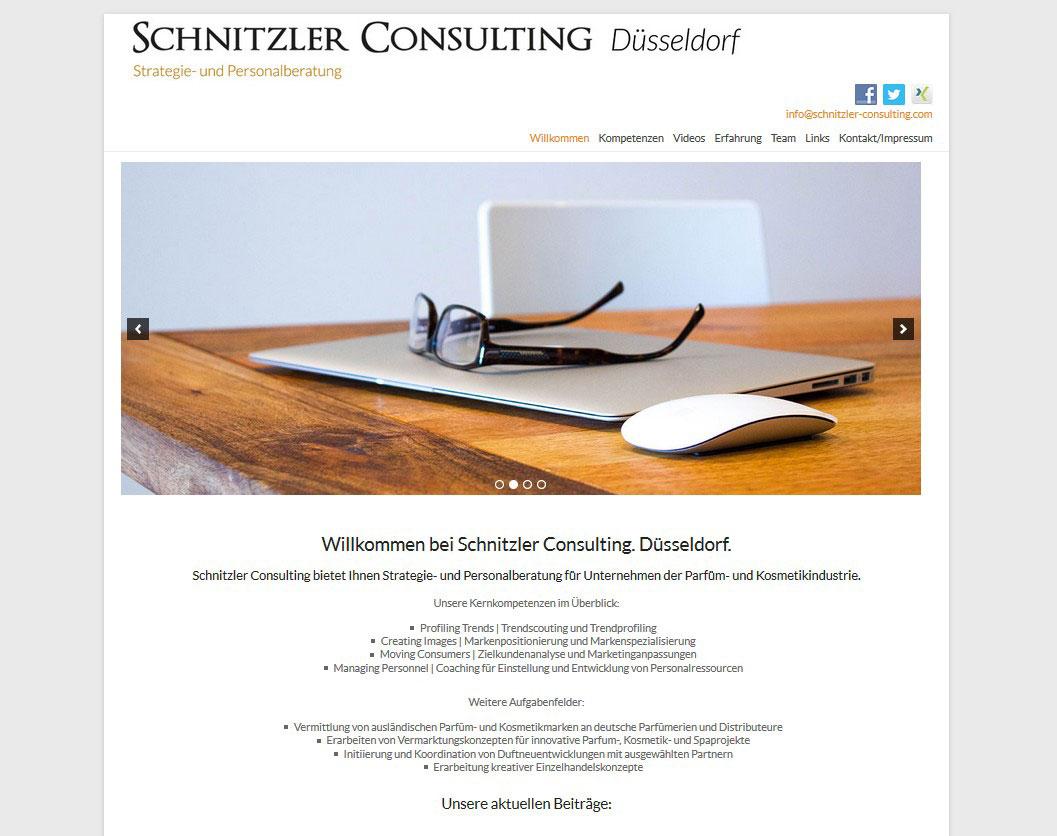 schnitzler-consulting